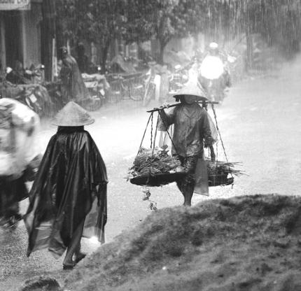 LAUDATO SI': Tiếng than khóc của trái đất và của người nghèo